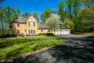 13100 Twin Lakes Drive, Clifton, VA 20124 (#FX9923251) :: Pearson Smith Realty