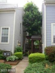 10077 Oakton Terrace Road #10077, Oakton, VA 22124 (#FX9924091) :: Pearson Smith Realty