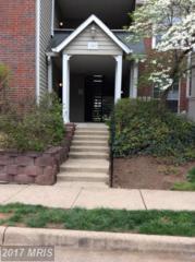 12162 Penderview Lane #1603, Fairfax, VA 22033 (#FX9924778) :: Pearson Smith Realty