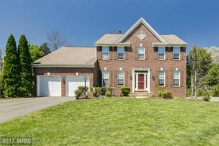 14620 Outpost Court, Centreville, VA 20121 (#FX9924968) :: Pearson Smith Realty