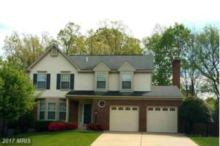 14718 Top Sergeant Lane, Centreville, VA 20121 (#FX9925632) :: Circadian Realty Group