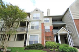 12150 Penderview Terrace #1325, Fairfax, VA 22033 (#FX9927797) :: Pearson Smith Realty