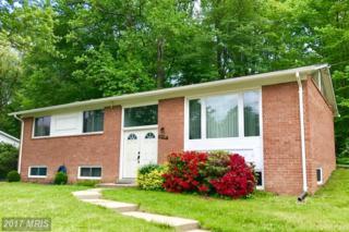 8205 Springfield Village Drive, Springfield, VA 22152 (#FX9928015) :: Pearson Smith Realty