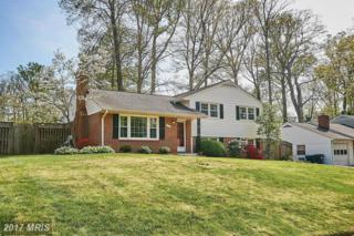 7913 Gosport Lane, Springfield, VA 22151 (#FX9928385) :: Pearson Smith Realty