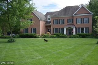 10917 Georgetown Pike, Great Falls, VA 22066 (#FX9928972) :: Circadian Realty Group