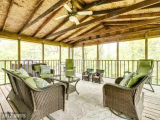 15315 Blueridge View Drive, Centreville, VA 20120 (#FX9929443) :: Pearson Smith Realty
