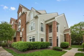 6860 Brindle Heath Way #201, Alexandria, VA 22315 (#FX9929519) :: Circadian Realty Group