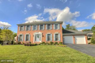 12564 Rock Ridge Road, Herndon, VA 20170 (#FX9929616) :: Pearson Smith Realty