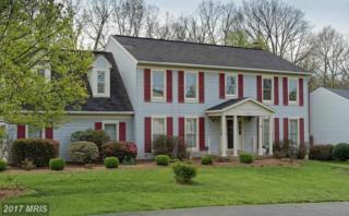 13201 Ashvale Drive, Fairfax, VA 22033 (#FX9929650) :: Pearson Smith Realty
