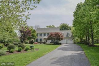 15623 Meherrin Drive, Centreville, VA 20120 (#FX9929884) :: Pearson Smith Realty