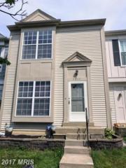 7205 Stover Drive, Alexandria, VA 22306 (#FX9929950) :: Pearson Smith Realty