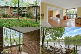 1544 Moorings Drive 2C, Reston, VA 20190 (#FX9930294) :: Pearson Smith Realty