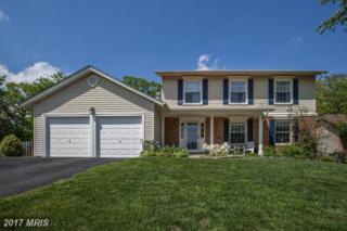 8914 Applecross Lane, Springfield, VA 22153 (#FX9930525) :: Pearson Smith Realty