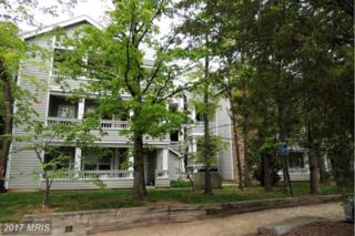 4417 Fair Stone Drive #202, Fairfax, VA 22033 (#FX9930594) :: Pearson Smith Realty