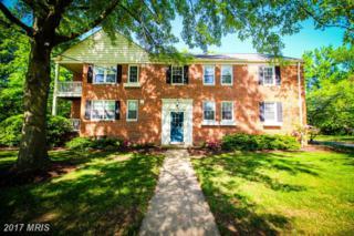 6500 Potomac Avenue B2, Alexandria, VA 22307 (#FX9931036) :: Pearson Smith Realty