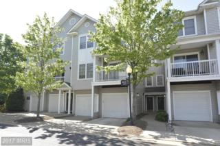 4614 Superior Square #4614, Fairfax, VA 22033 (#FX9931493) :: Pearson Smith Realty