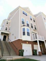 2483 Curie Court #103, Herndon, VA 20171 (#FX9931998) :: Pearson Smith Realty