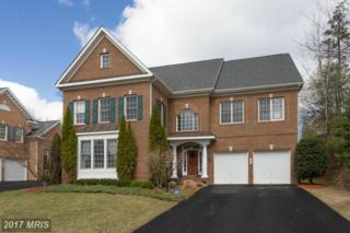 2372 Jawed Place, Vienna, VA 22027 (#FX9932825) :: Pearson Smith Realty