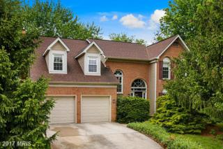 13377 Glen Taylor Lane, Herndon, VA 20171 (#FX9932895) :: Pearson Smith Realty