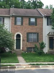 3302 Stone Heather Court, Herndon, VA 20171 (#FX9933524) :: Pearson Smith Realty