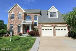 13412 Amy Way, Herndon, VA 20171 (#FX9935521) :: Pearson Smith Realty