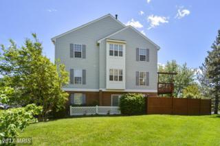 4816 Heron Neck Lane, Fairfax, VA 22033 (#FX9935907) :: Pearson Smith Realty