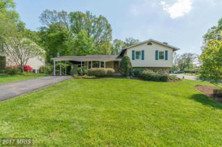 5017 Dequincey Drive, Fairfax, VA 22032 (#FX9936367) :: Pearson Smith Realty