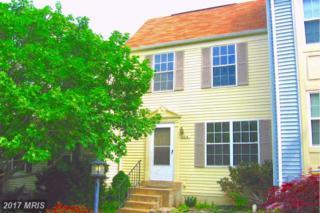 6614 Greenleigh Lane, Alexandria, VA 22315 (#FX9937126) :: Pearson Smith Realty