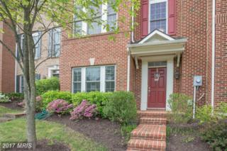 12238 Water Elm Lane, Fairfax, VA 22030 (#FX9937402) :: Pearson Smith Realty