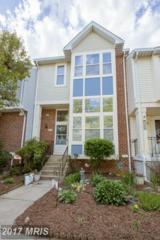 5462 Stavendish Street, Burke, VA 22015 (#FX9937435) :: Pearson Smith Realty