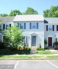 6622 Birchleigh Way, Alexandria, VA 22315 (#FX9937549) :: Pearson Smith Realty