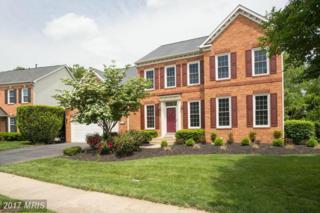 14074 Eagle Chase Circle, Chantilly, VA 20151 (#FX9937553) :: Pearson Smith Realty
