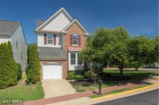 8824 Carpenters Hall Drive, Lorton, VA 22079 (#FX9938471) :: Pearson Smith Realty