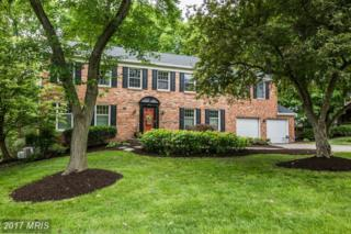 8607 Marsh Court, Springfield, VA 22153 (#FX9938573) :: Pearson Smith Realty