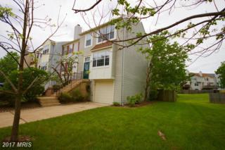 3338 Buckeye Lane, Fairfax, VA 22033 (#FX9938817) :: Pearson Smith Realty
