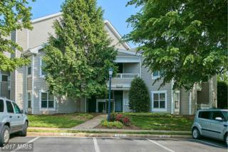 6011 Rosebud Lane #202, Centreville, VA 20121 (#FX9939434) :: Pearson Smith Realty