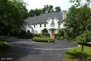 9720 Schreiner Lane, Great Falls, VA 22066 (#FX9939452) :: Pearson Smith Realty