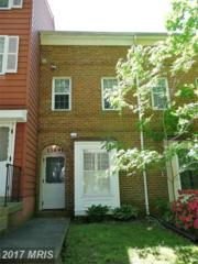 13891 Oyster Point Court, Chantilly, VA 20151 (#FX9939782) :: Pearson Smith Realty