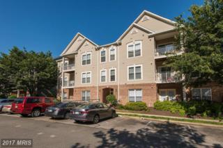 6515 Grange Lane #304, Alexandria, VA 22315 (#FX9940628) :: Pearson Smith Realty