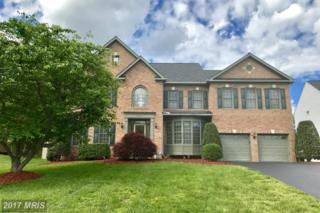 5602 Willow Crossing Court, Clifton, VA 20124 (#FX9940717) :: Pearson Smith Realty