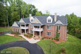 6500 Briarcroft Street, Clifton, VA 20124 (#FX9940970) :: Pearson Smith Realty
