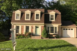 9116 Meadow Rue Lane, Annandale, VA 22003 (#FX9941035) :: Pearson Smith Realty