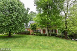 7513 Cannon Fort Drive, Clifton, VA 20124 (#FX9941708) :: Pearson Smith Realty