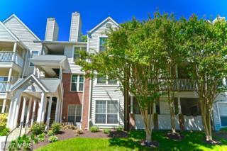 3914 Penderview Drive #504, Fairfax, VA 22033 (#FX9942152) :: Pearson Smith Realty