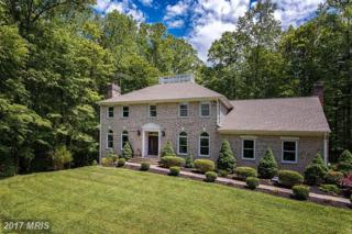 8707 Cathedral Forest Drive, Fairfax Station, VA 22039 (#FX9942808) :: Pearson Smith Realty