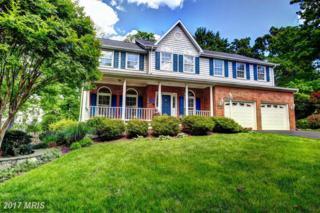6621 Rock Lawn Drive, Clifton, VA 20124 (#FX9943211) :: Pearson Smith Realty