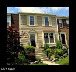 7416 Houndsbury Court, Alexandria, VA 22315 (#FX9943418) :: Pearson Smith Realty