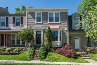5720 Heritage Crossing Court, Centreville, VA 20120 (#FX9943523) :: Pearson Smith Realty