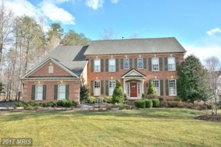 7411 Union Ridge Road, Clifton, VA 20124 (#FX9943846) :: Pearson Smith Realty