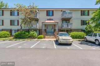 8357-B Claremont Woods Drive B, Alexandria, VA 22309 (#FX9943966) :: Pearson Smith Realty